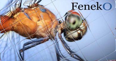 plisse vliegendeur feneko